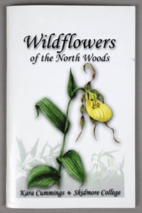 Wildflowers of the North Woods